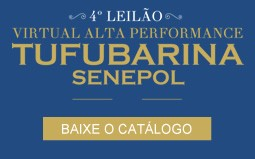 Baixo o catalogo do Leilão Alta Performance Tufubarina 2015